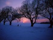Cold sunset/Soleil d'hiver