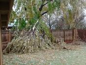 Ice Storm 11-28-15