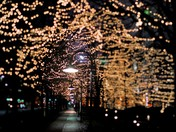 Holiday Lights at Gene Leahy Mall