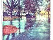 Rainy days we miss you