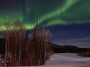 Northern Lights Over Mt Bergeron
