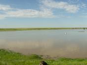 Alberta Flood 2013, Bow City panorama
