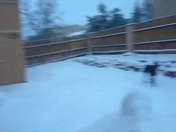 snow starts