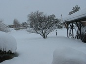 12 inches of snow in Socorro