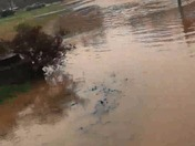 Creek floods street