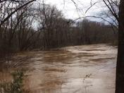 Saluda River, Piedmont