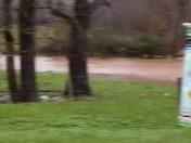 Flooding hunter road Ponder farm