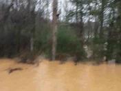 Flood 12/30/15