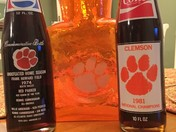 Clemson National Champions 1981