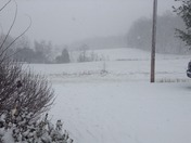 Snow Fall in Lynx