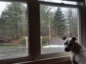 I'm Not Going Out There! It's Snowing Heavy (Winter Girl)