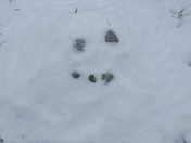 My 9 Yrs. Old Daughter (Kayla Denney) Made  a Snowman. It's All She Could Do. Lo