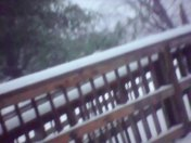 Campbellsville , Taylor county here . So much snow already ! Thank You Matt. Goo