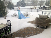 Visit From a Snow Princess