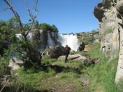 Lundbreck Falls AB