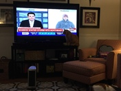 Cat tv stand ocala
