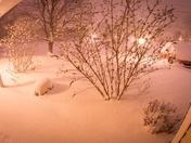 Time Lapse of The Blizzard of '16 in Gettysburg, PA