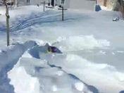 sledding in back yard