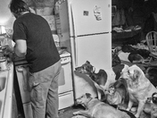 Nacho Night with 30 + Rescued Dogs