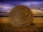 Golden straw bale with a bursting sunset