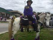Mardi Gras Cowboys