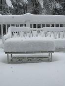 snow 2/5/16