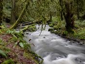 Tod Creek.