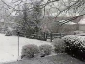 Snowfall from trained spotter Joe Nolan
