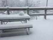 Spring Grove Snow