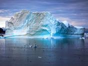Iceberg in Harbor