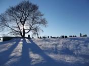 Tranquility ~ Pequea Presbyterian Cemetery