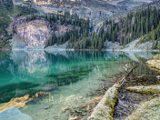 Lake O'Hara Scenic Shoreline