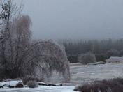 Feb ice 2016