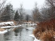 January along the Humber River Heritage Trail