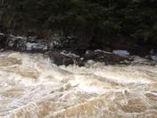 Raging Pemigewassett River