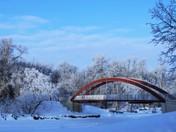 Red Bridge, white forest