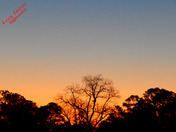 Friday Slidell Sunrise