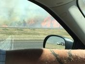 Gras fire near mustang