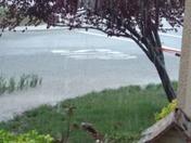 Over abundance of rain