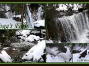 Hogg's Falls