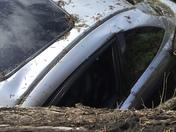 Tree falls on cars Aptos St, Aptos