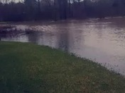 Flooding in Ponchatoula