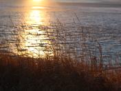 Fort Sask Sunset