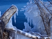Icey Shores