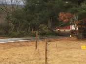Wind downs power lines in swanzey