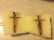 Amazing cross in our potato