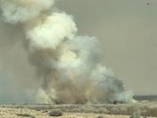 Bosque fire