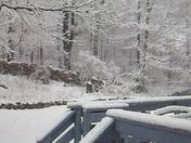 Sunday 4/03 snow