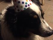 Miss Tedi - Happy 4th Birthday