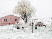 April Snow Showers in Gallina, NM